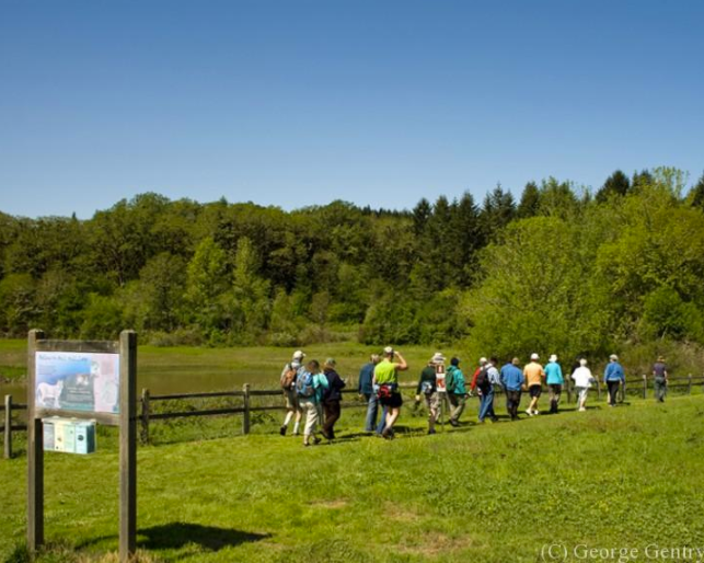 Internship Opportunity With the Willamette Valley National Wildlife Refuge Complex