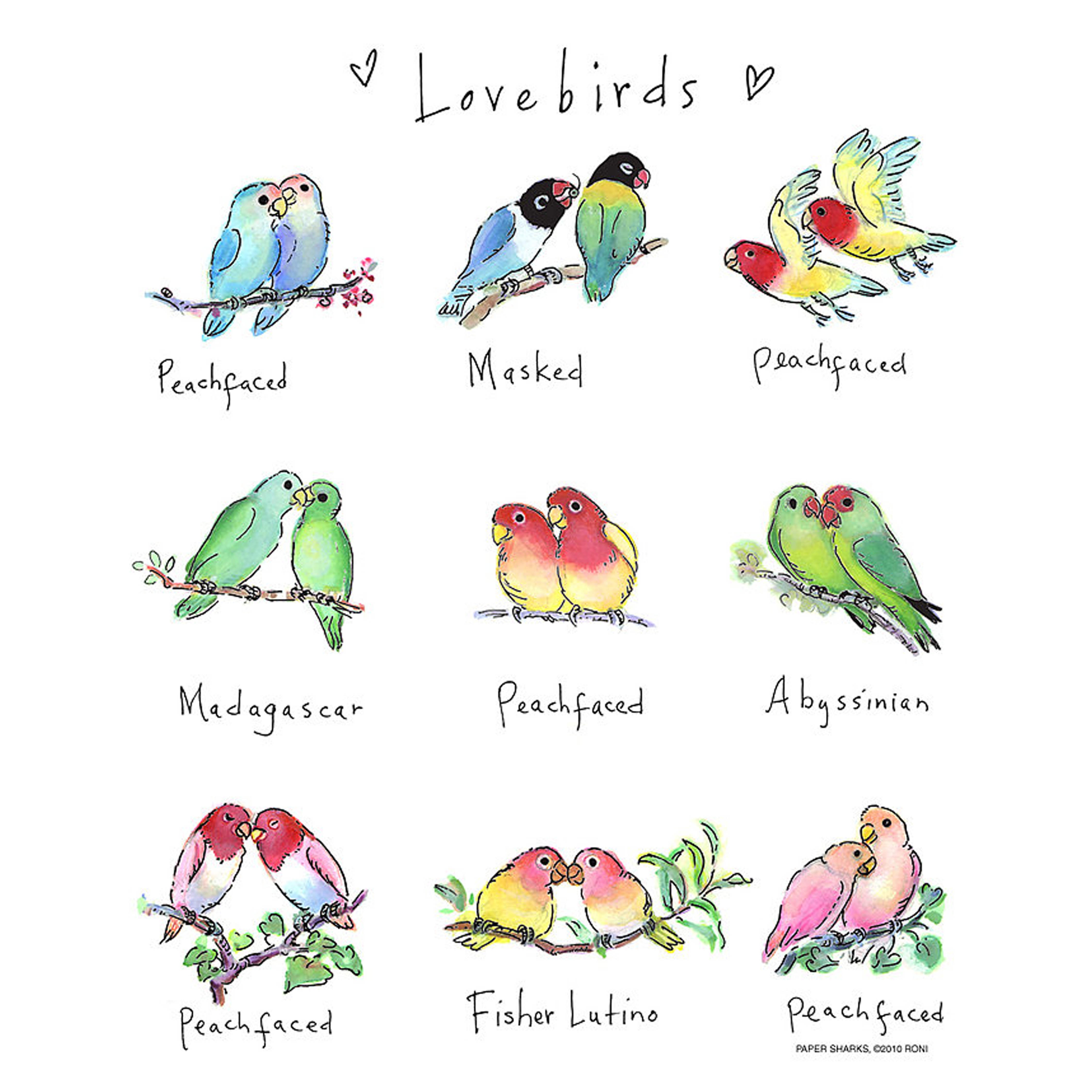 Love Birds White Tea Towels