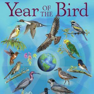 World Migratory Bird Day 2018